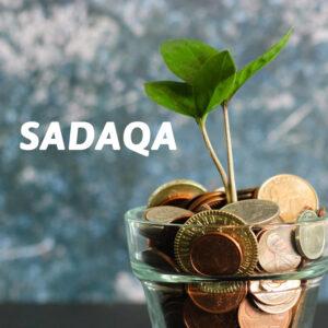 Products705x705sadaqa